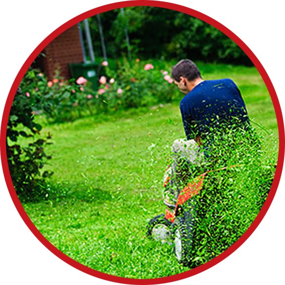 maryland lawn mowing pros